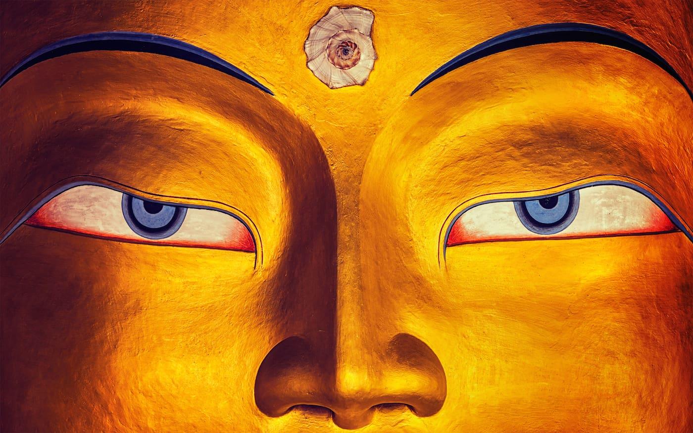 """""""Não conheço nada com mais poder de causar estados saudáveis do que a diligência"""": palavras do Buda"""